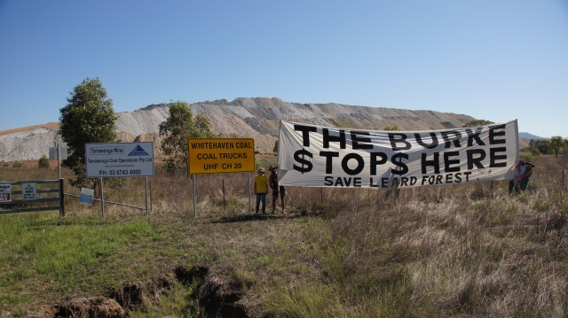 save the Leard State Forest